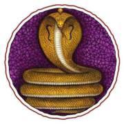 symbol-naga